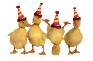 NYE ducks