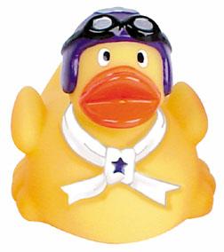 duck aviation