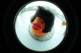duck russia