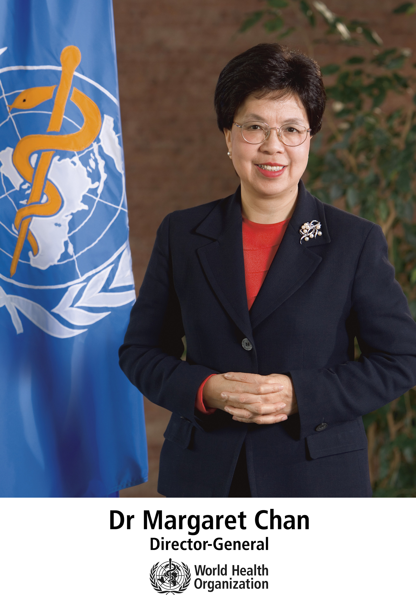 So You Want to Be the Next Director-General of the World Health Organization…